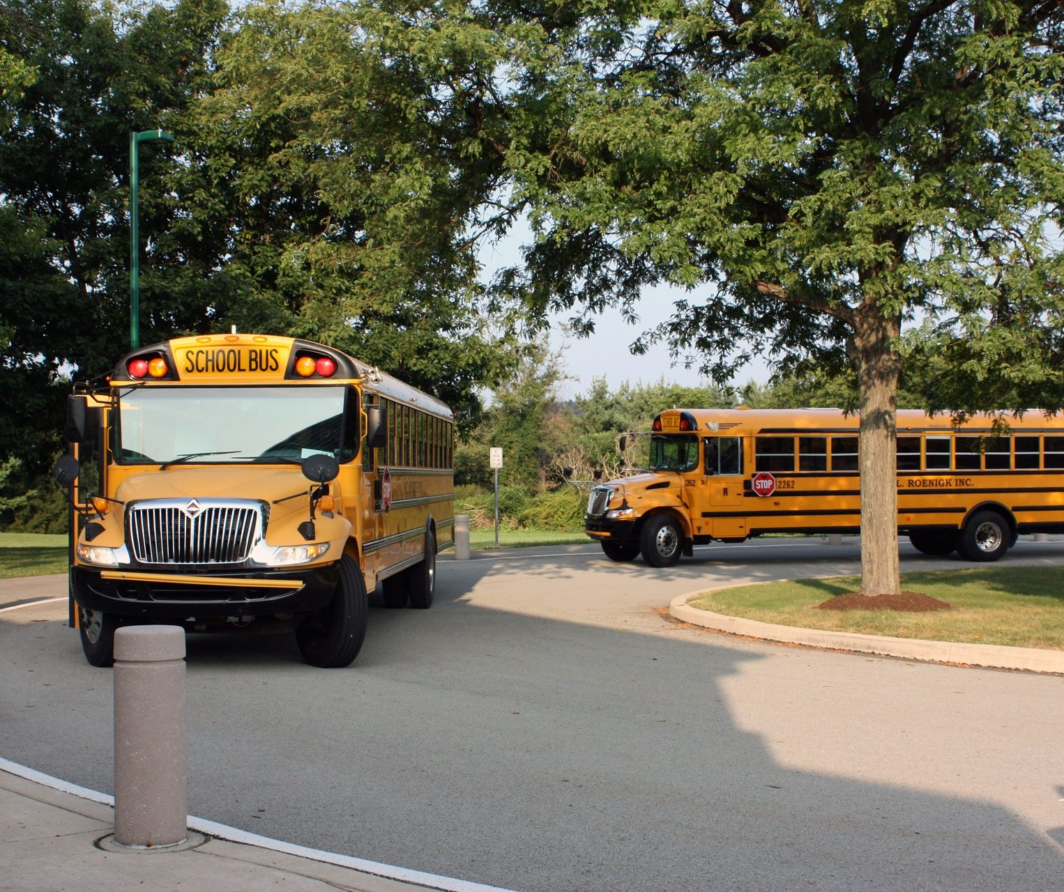 A pair of school buses rounding a circle.
