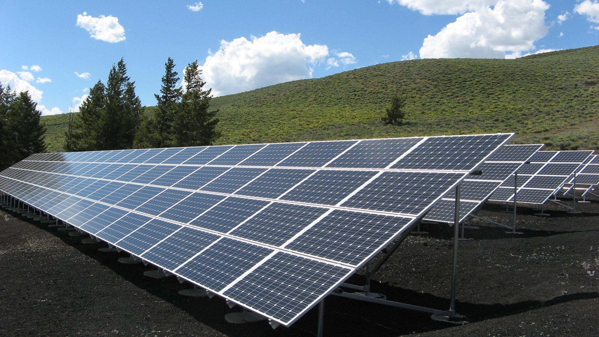 An array of solar panels on a grassy field.