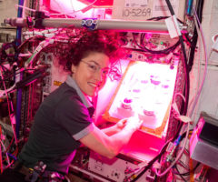 NASA astronaut Christina Koch initiates the Veg-PONDS-02 experiment on the International Space Station.