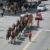 Budweiser Clydesdales to Trot Down Main Street